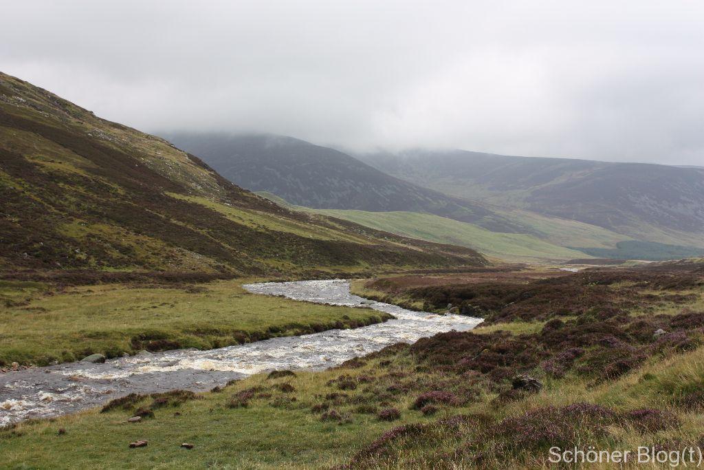 Schottland - Schöner Blog(t)