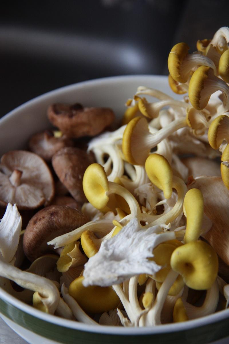 Essen wie Gott in Deutschland - Jägerschnitzel mit gemischten Pilzen ...